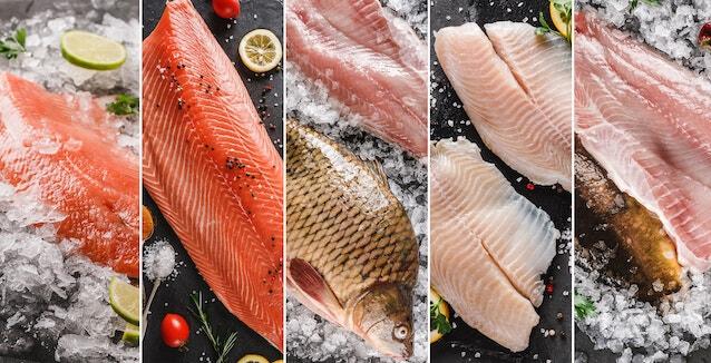 Fisch richtig würzen