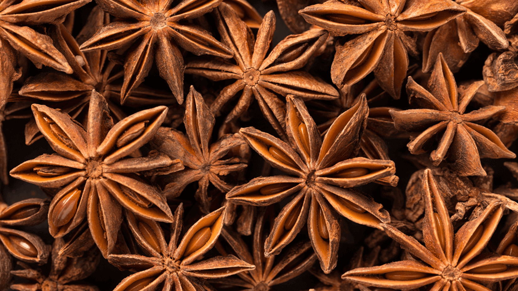 Sternanis - Sternchen der Weihnachtsbäckerei