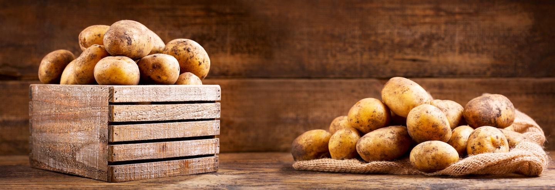Kartoffeln: Alles was Du wissen musst