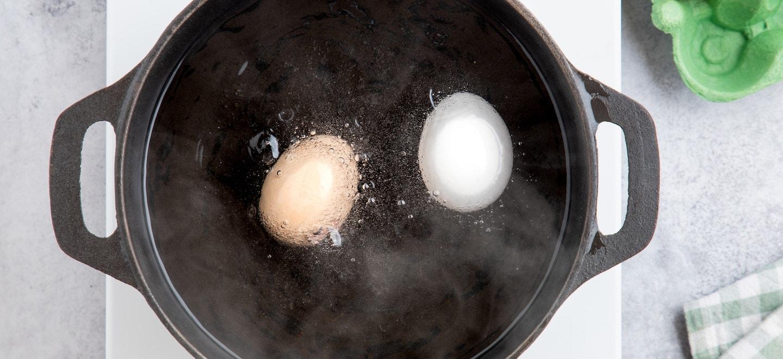 Unterschied braune Eier weiße Eier
