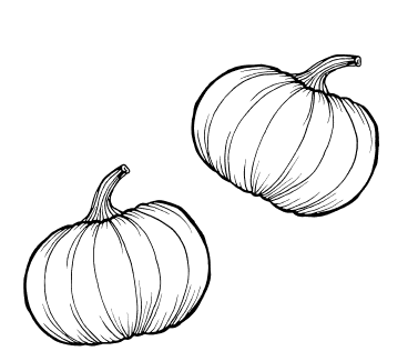 Kürbis Illustration