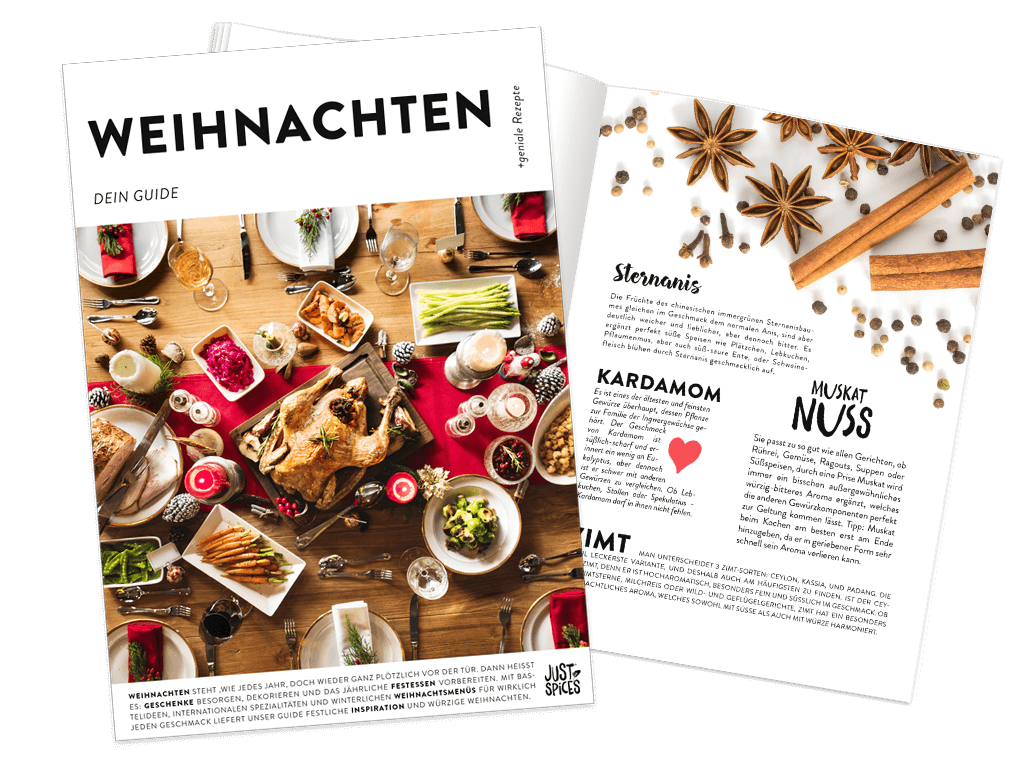 Weihnachts Guide